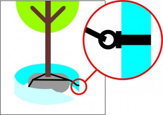 Podzemní kotvení stromu za bal č.2