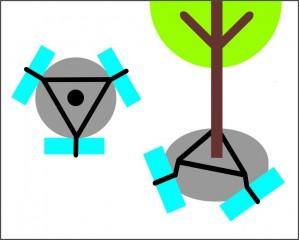Podzemní kotvení stromu za bal č.3