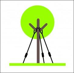 Nadzemní kotvení stromu za kmen č.1