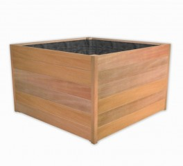 Tropické dřevo č.2
